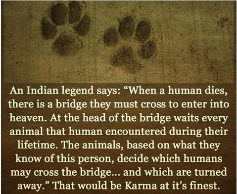 Indian Legends says: The animals decide which humans cross the bridge - karma at it finest