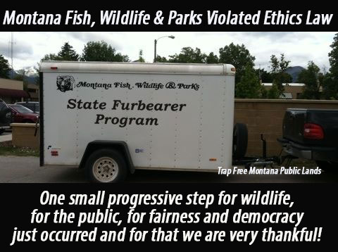 Montana wildlife agency violated ethics law trap free for Montana fish and wildlife