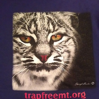 Trap Free Montana Public Lands T- Shirt with photo of Bobcat on back